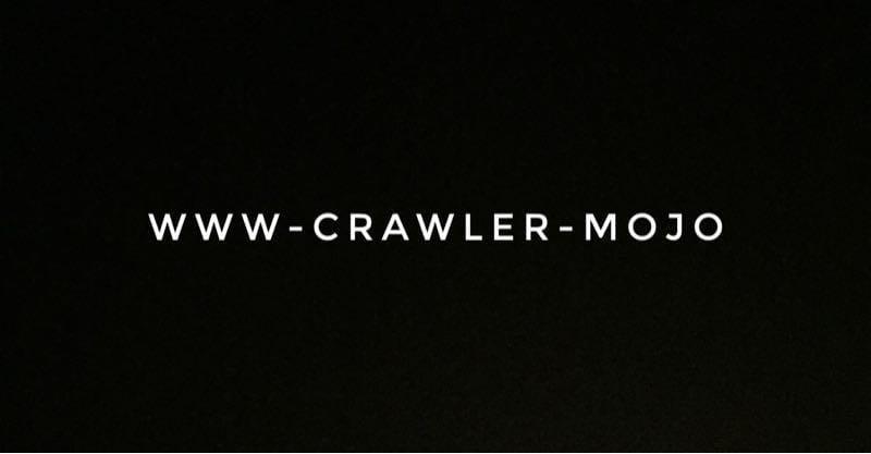 JSのリンクもチェックできるリンクチェック「WWW-Crawler-Mojo」が素晴らしい
