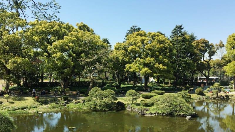 日比谷公園にヘビ?生き物が豊富なのは、自然な環境が形成されているから。